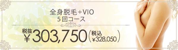 全身脱毛+VIO 5回コース