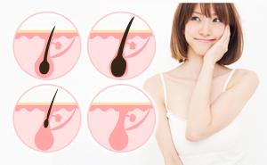 毛周期とは?部位別の毛周期と期間について